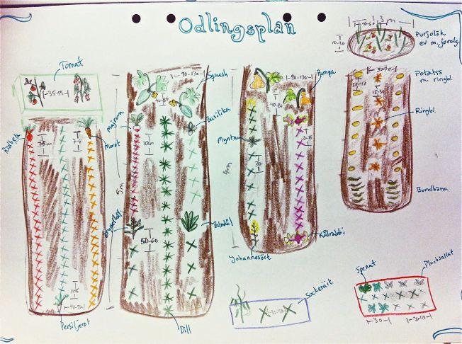 odlingsplan